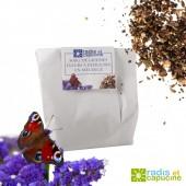 Graines de fleurs à papillons vrac 500 gr