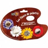 Graines de fleurs du jardin de Monet en palette