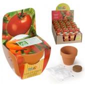 Mini kit légumes tomate cerise bio