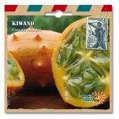 Graines exotiques kiwano