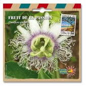 Graines exotiques fruit de la passion