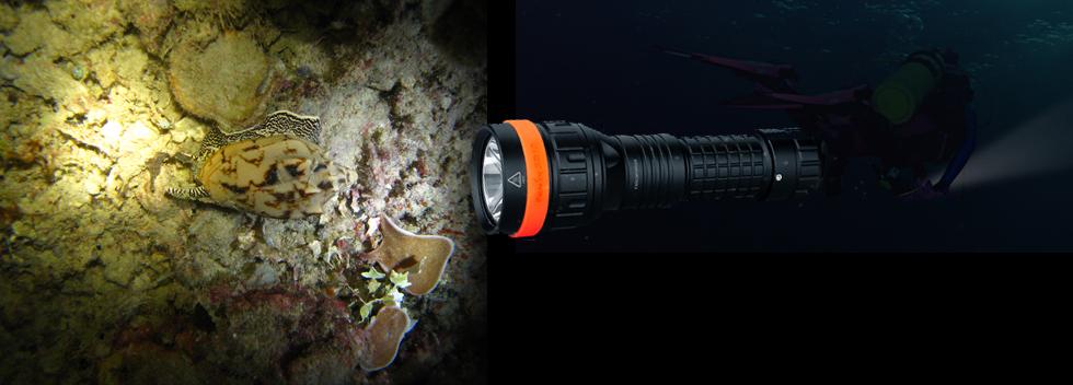 Fenix SD Lampes Fenix pour la plongée toutes eaux
