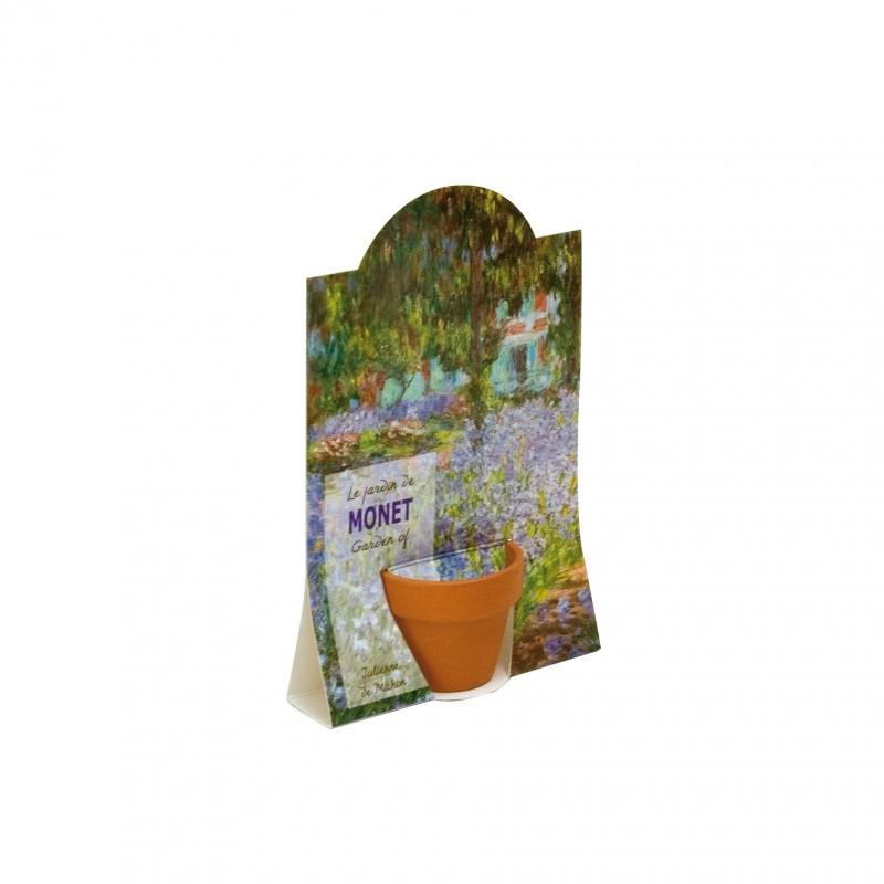 Graines de Julienne de Mahon du jardin de Monet en pot de culture