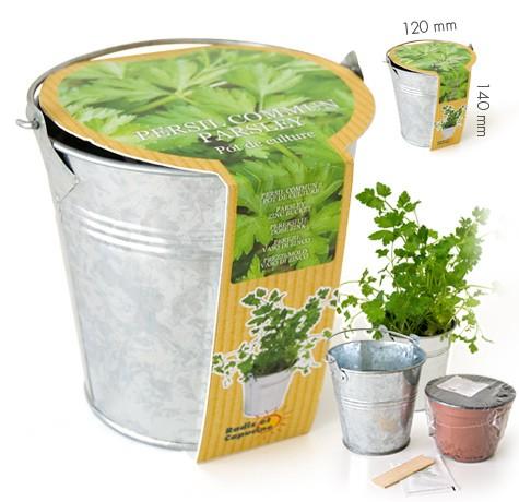 Pot zinc 12cm persil commun bio