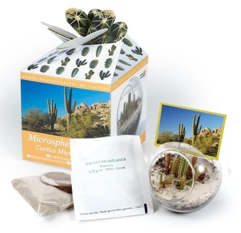 Coffret cadeau microsphere cactus