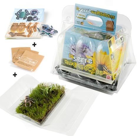 Mini serre des insectes - ecosystème