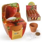 Mini kit originalités fraise