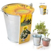 Pot zinc 12cm tournesol bio