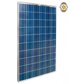 Module solaire Istar IS50P