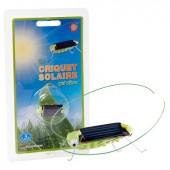Criquet solaire
