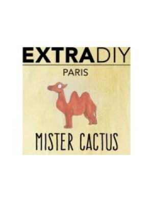 Mister Cactus Aromes Extradiy Extrapure 10ml
