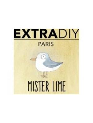 Mister Lime Aromes Extradiy Extrapure 10ml