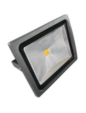 Projecteur LED 30W - Classique Premium - Corps Graphite - Blanc froid