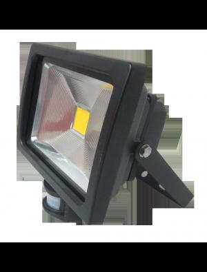 Projecteur LED 20W - Avec Détecteur Premium - Blanc froid
